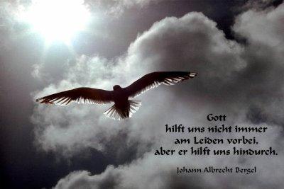 Copyright (c) Monika Schudel, Schweiz Http://www.mschudel.ch/ Mit  Persönlicher Genehmigung Für Diese Homepage